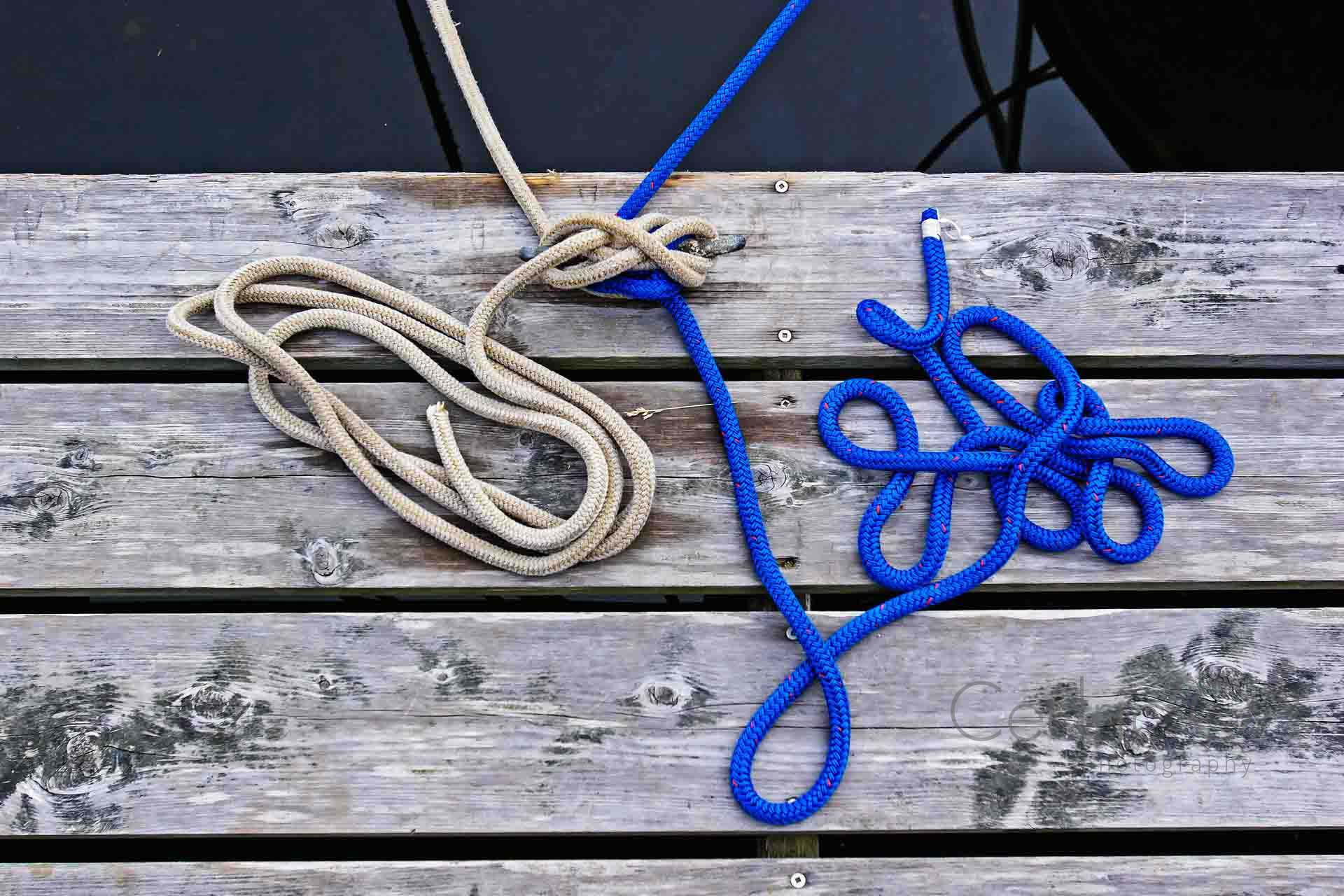 Ropes on the dock